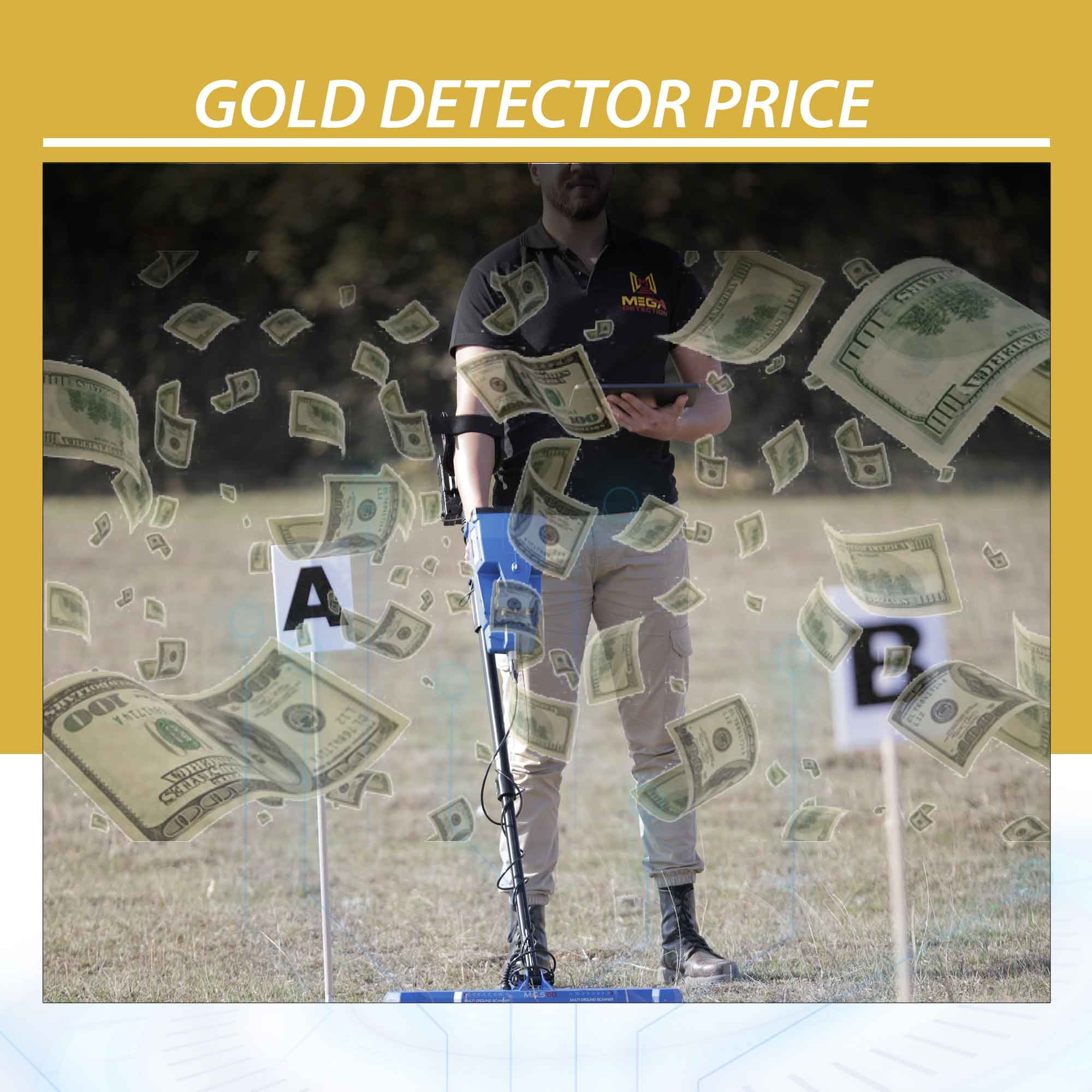 Gold Detector Price