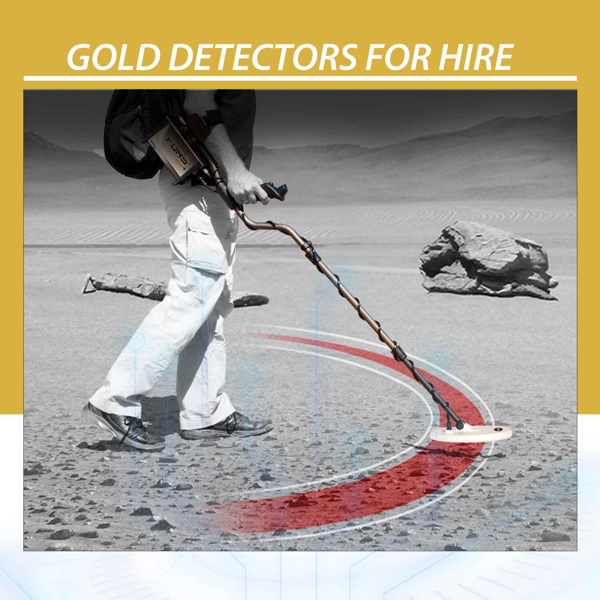 Gold Detectors for Hire
