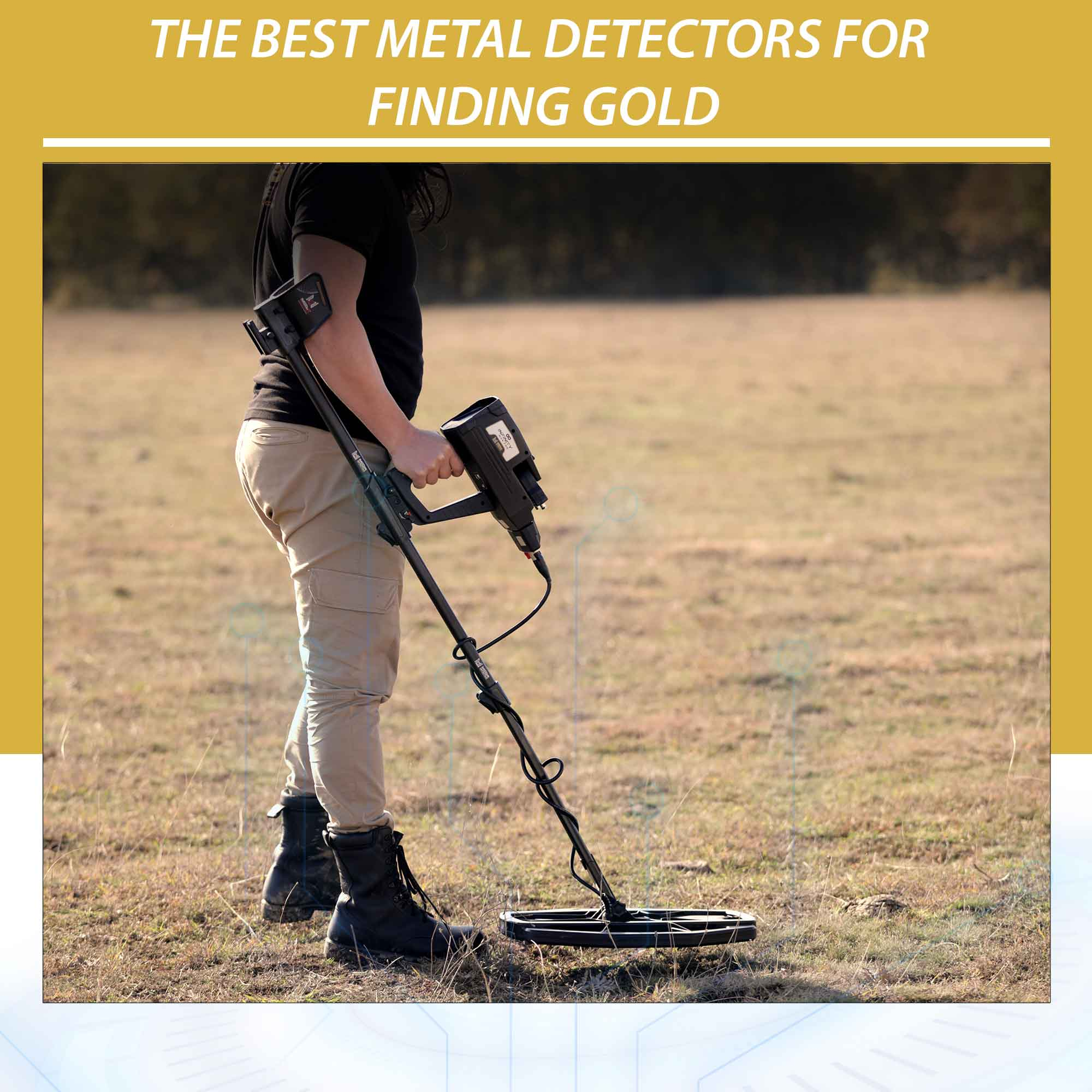 The best metal detectors for finding gold